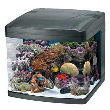 Oceanic 29 gallon biocube new in box ebay for 29 gallon fish tank